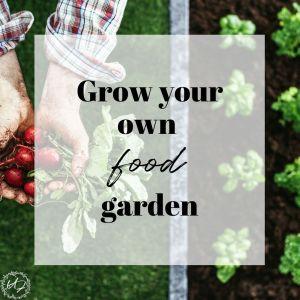 grow your own food garden