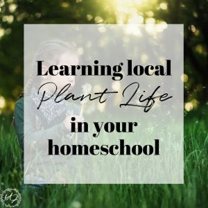 learning local plant life in your homeschool