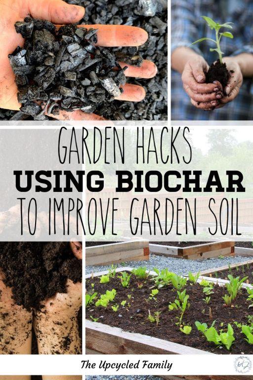 Garden Hacks using biochar to improve garden soil