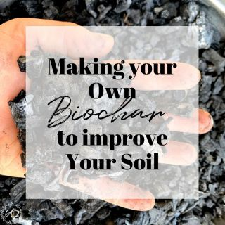 making your own biochar to improve your soil