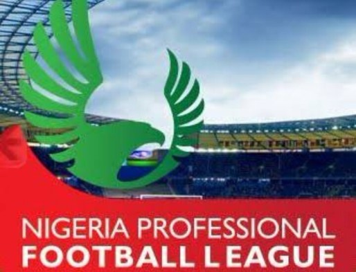 Image result for nigeria professional football league logo