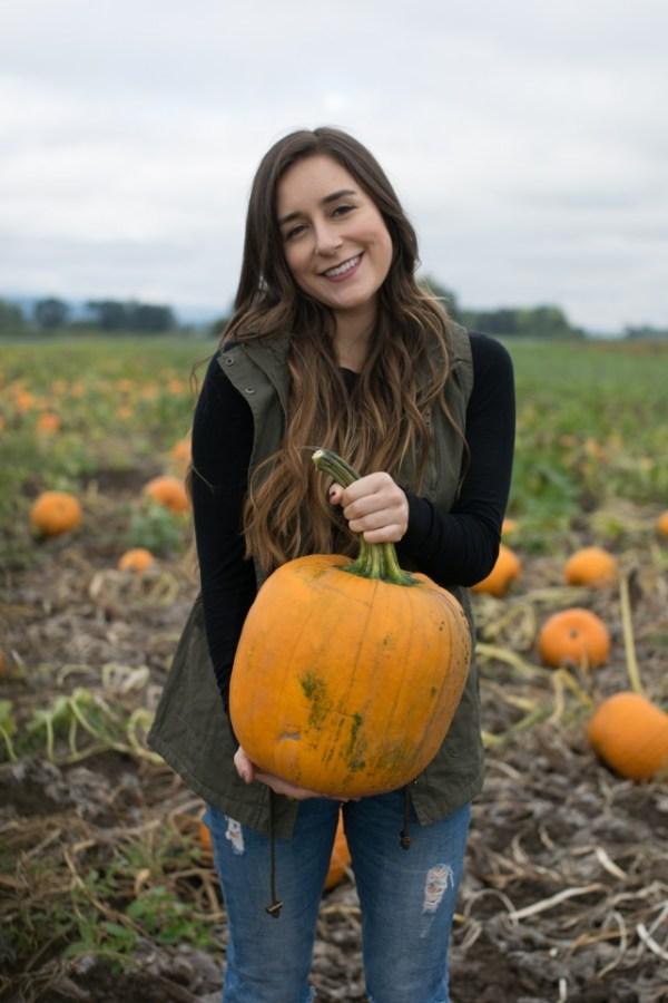 pumpkin patch, pumpkins, fall, halloween, sauvie island, oregon, the pumpkin patch.