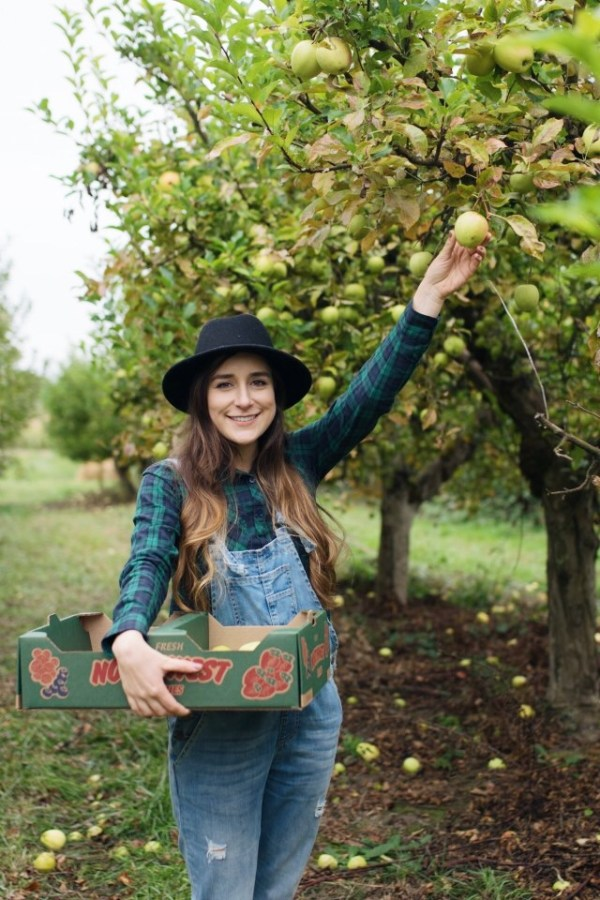 apple picking, apples, fall, fun, tradition, sauvie island, portland, oregon, orchard, fashion, fall outfit, overalls, flannels.