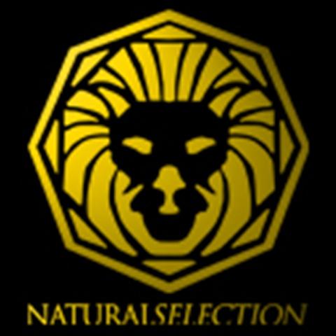 natural selection matchmaking