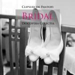 Clipsuri de pantofi Bridal