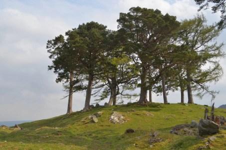 Fairy Hill Scotland Highlands Outlander