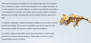 facility page header text and lizard