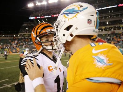 dolphins-v-bengals-sam-greene_enquirer