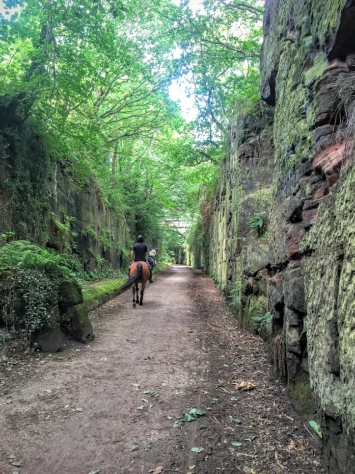 The Wirral Way - Willaston to Gayton