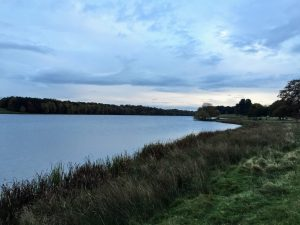 Tatton park   Cheshire   Walking and Hiking   Under 1 hour from manchester   Get Outside Manchester   Sarah Irving   The Urban Wanderer