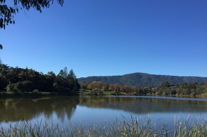 My adventure to Vasona Lake County Park, Los Gatos, California