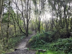 Local Adventures | Manchester Parks | Clayton Vale, Manchester, Philips Park, Clayton, Manchester | The Urban Wanderer | Sarah Irving | Outdoor Blogger | Travel Blogger | Manchester Blogger
