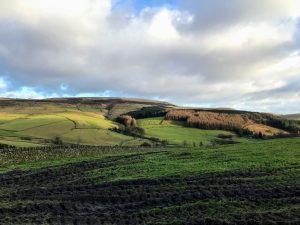 Macclesfield Forest and Ridgegate Reservoir | Peak District Walks | Cheshire Walks | Forest | The Urban Wanderer | Sarah Irving | UK | Outdoor Blogger | Travel Blogger | Manchester Blogger