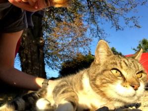 Get Outside Day | Ordnance Survey | The Urban Wanderer | Sarah Irving | UK | Outdoor Blogger | Travel Blogger | Manchester Blogger