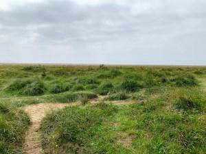 Lytham St Annes sand dunes