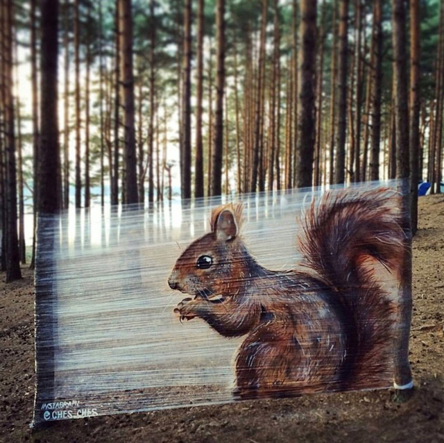 Creative squirrel artwork by @ches_ches