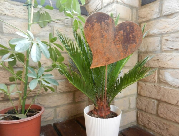 flower pot-decorated-with-heart
