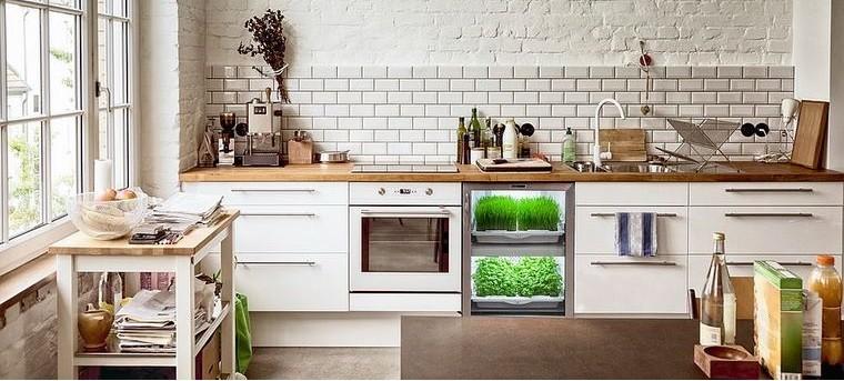 contemporary cuisine herbs