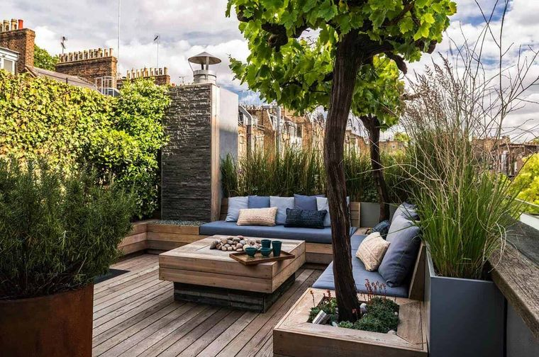 perennial plant terrace decoration
