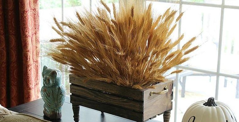 ears of wheat inside
