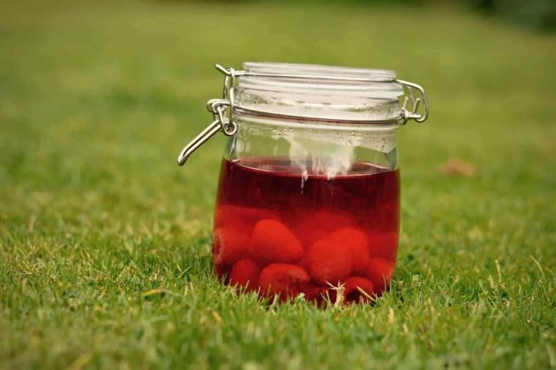 Raspberry Gin