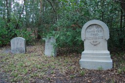 """""""Haunted Mansion Tombstones"""" by Lunchbox Photography is licensed under CC BY"""
