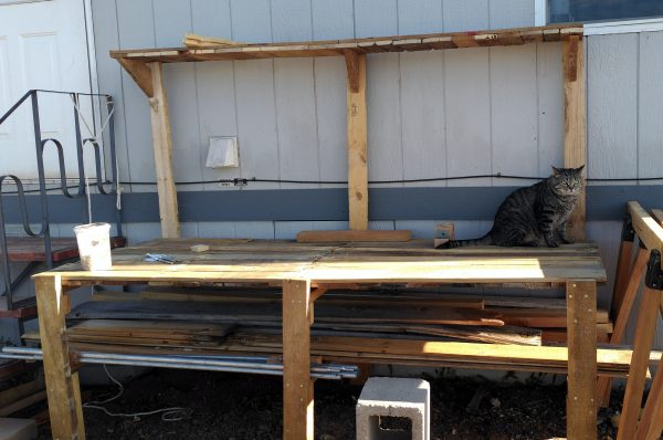 A wide wooden worktable, set up against the side of a house. It's got three front legs, & three tall back legs with a shelf across the top. There's a large grey tabbycat sittin on the right side.