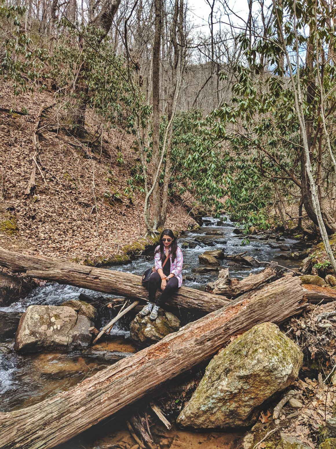 March Favorites - Amicalola Falls