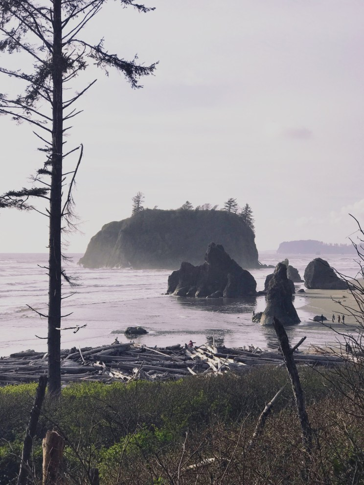 Olympic National Park Roadtrip