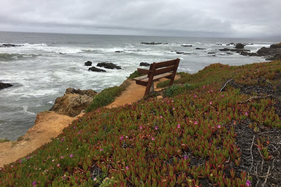 Pescadero State Beach in the San Francisco Bay Area, California.