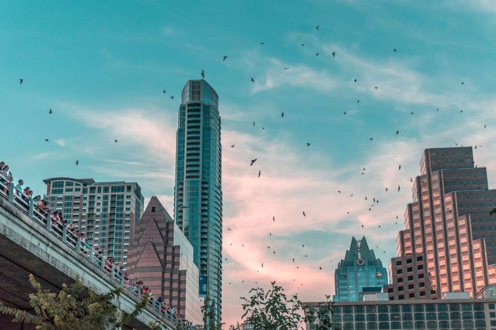 People watching 1.5 million bats emerging from their dwelling under the Congress Avenue Bridge in Austin, Texas.