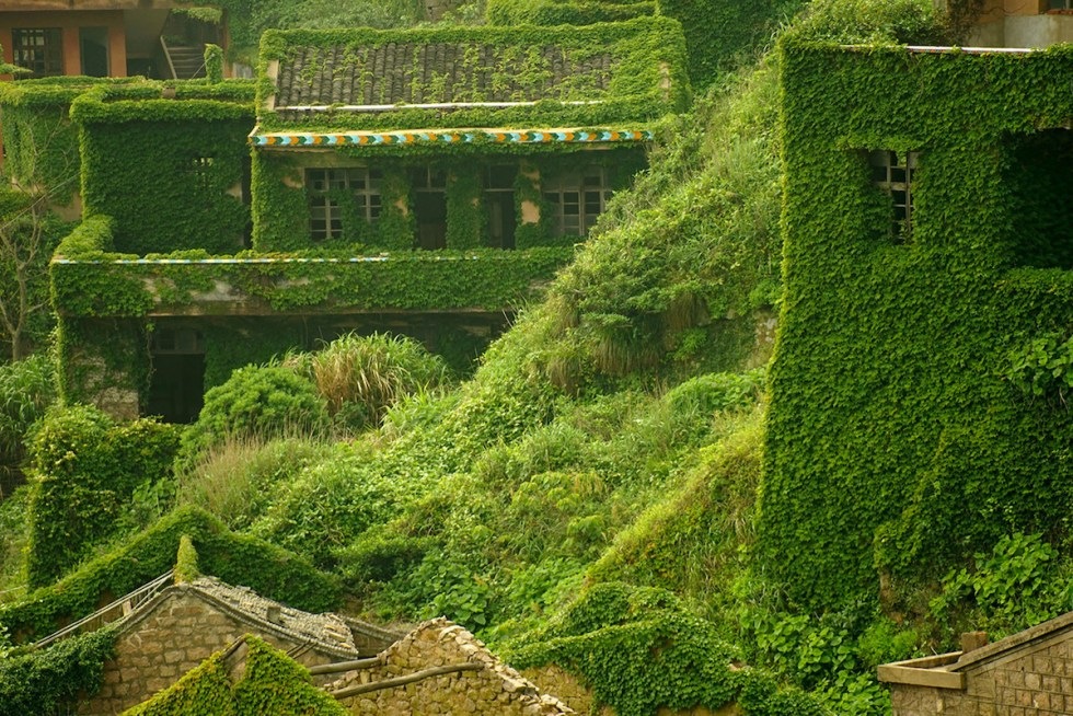 Abandoned fishing village in China swallowed by dense layers of ivy slowly creeping over every brick and path