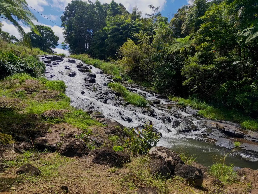 Stop by the Mungalli Falls on your way to Mungalli Creek Dairy as you continue on your Atherton Tablelands self-drive itinerary.