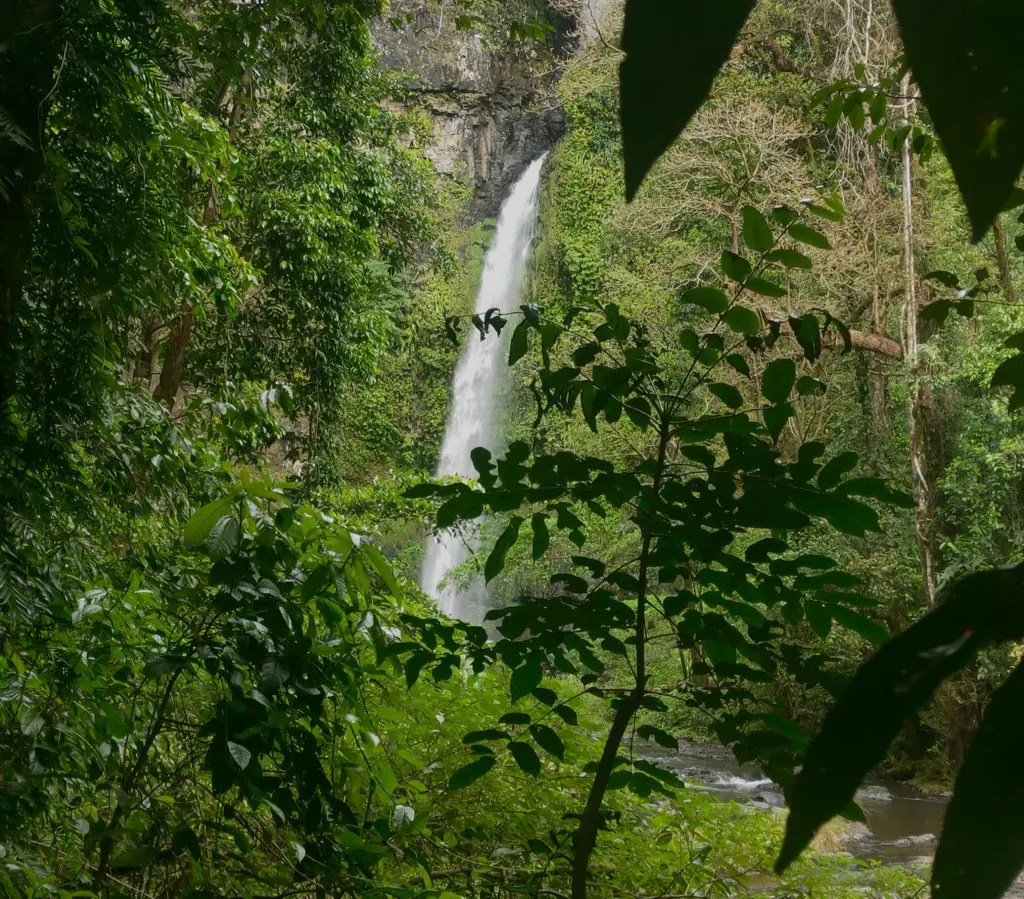 What to do in Atherton? Visit the Nandroya Falls, a stunning waterfall set against the lush green rainforest in Atherton Tablelands.