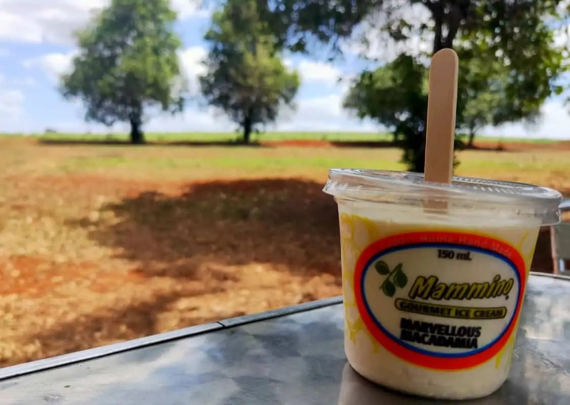 A tub of Mammino ice cream, one of the best things to do in Childers, set on a table with the paddock in the background.