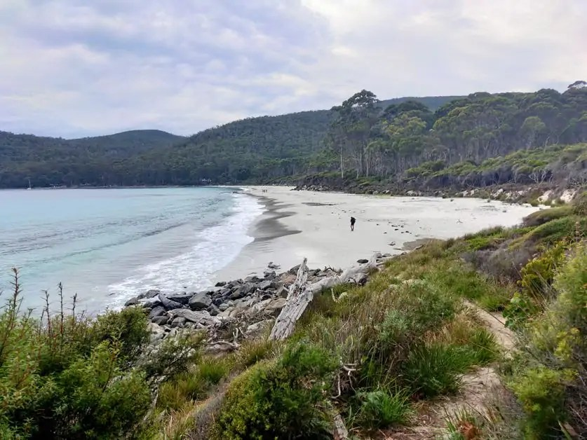 Fortescue Bay Beach, one of the best free things to do on the Tasman Peninsula