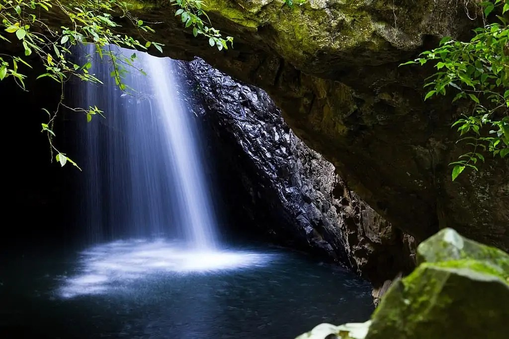 A picture of water falling at Macgregor Falls and Cave Creek in Springbrook one of the best national parks near Brisbane
