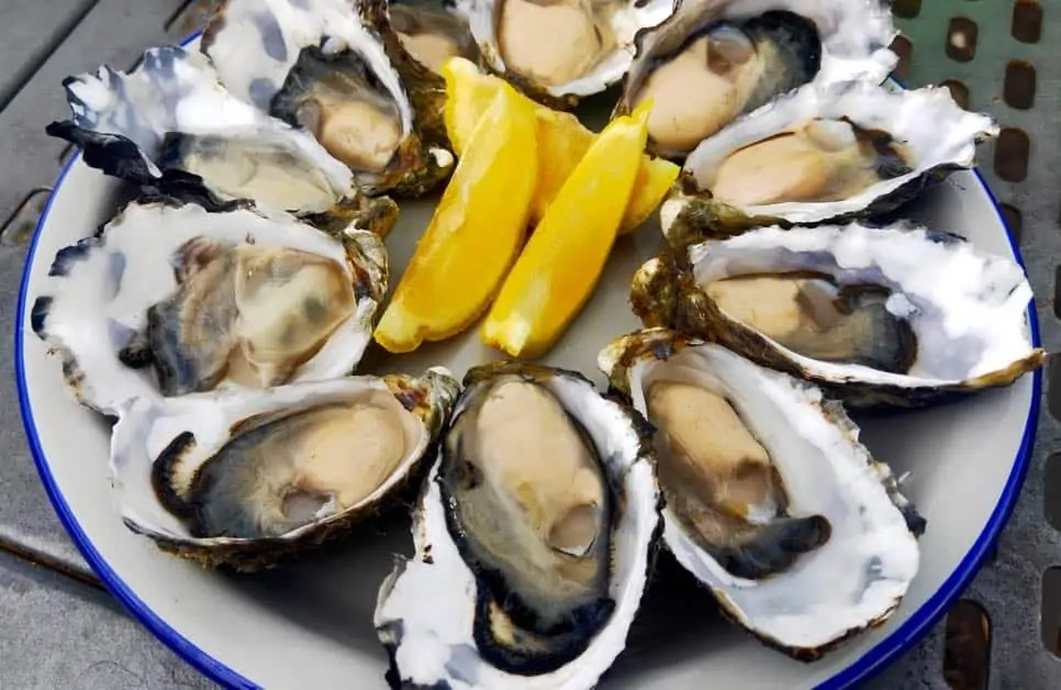 A plate of Tasmanian Oysters. Enjoying 'bay-to-bar' dinging is one of the best things to do on Bruny Island