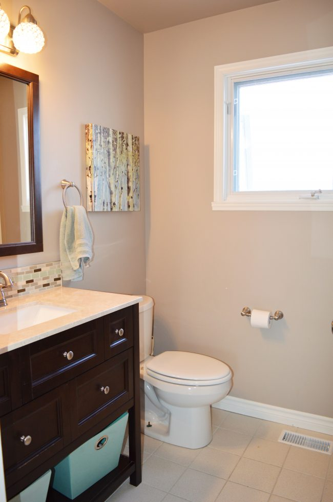 bathroom makeover with birch branch shelves