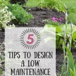 5 garden design tips
