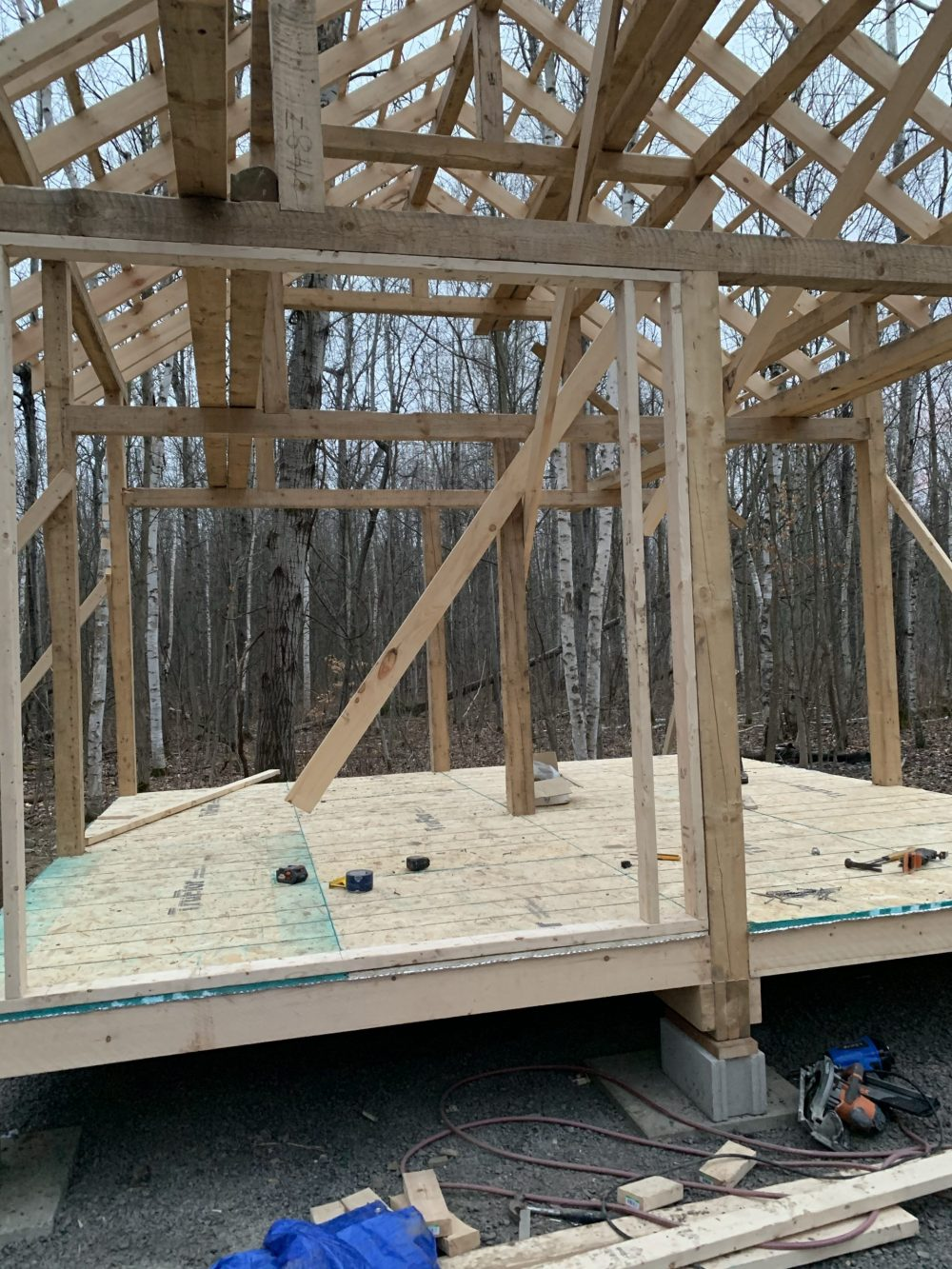 tiny cabin roof rafters and floor joists