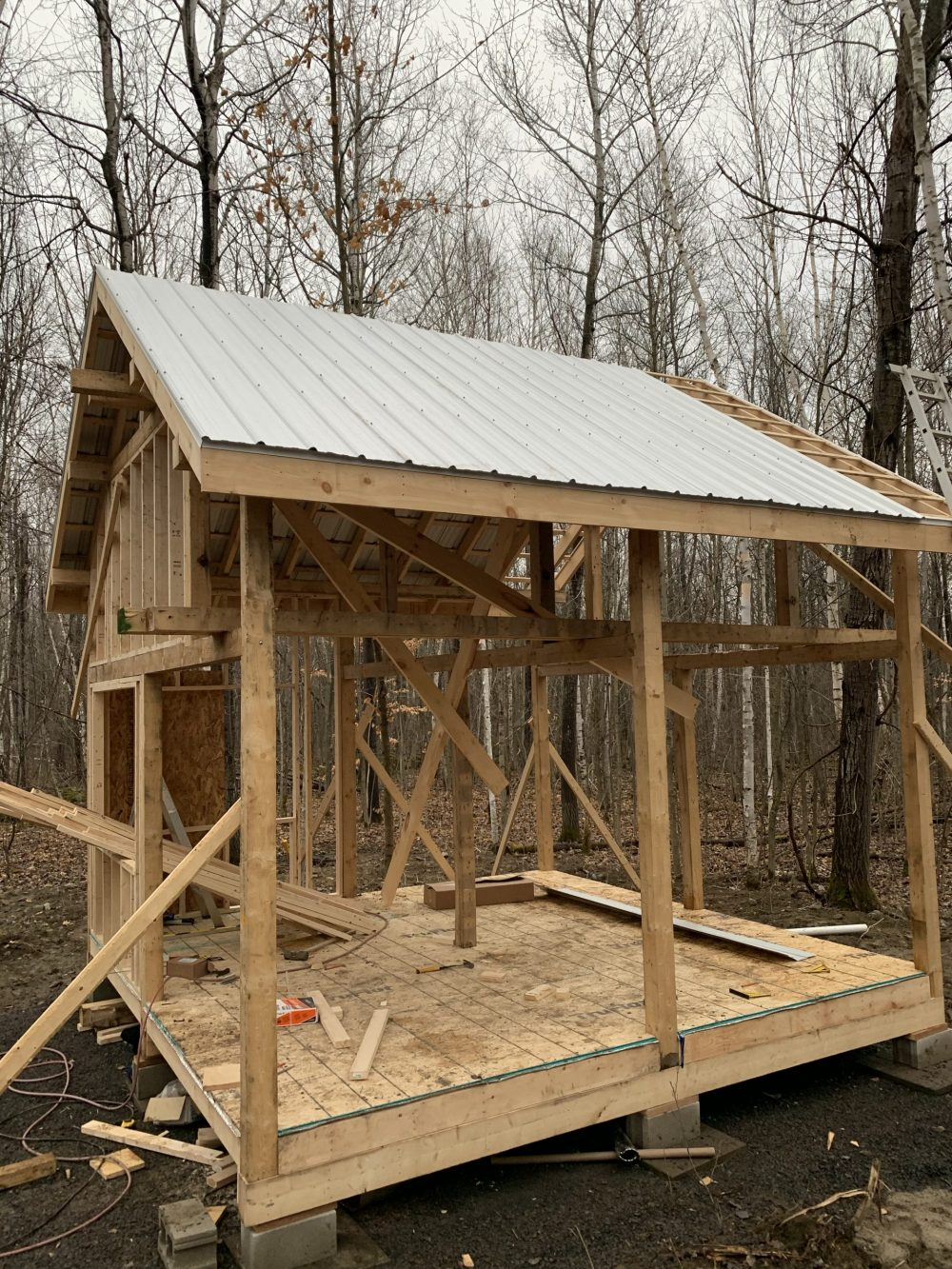 tin roof on a tiny cabin