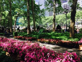 Beautiful flowers around Bryant Park