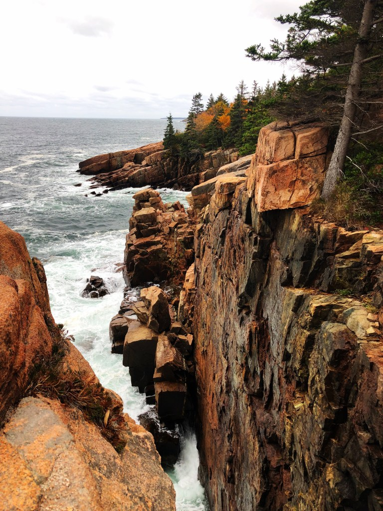 Ocean from Acadia parks scenic trail