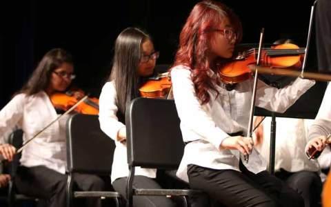 Violin Rentals