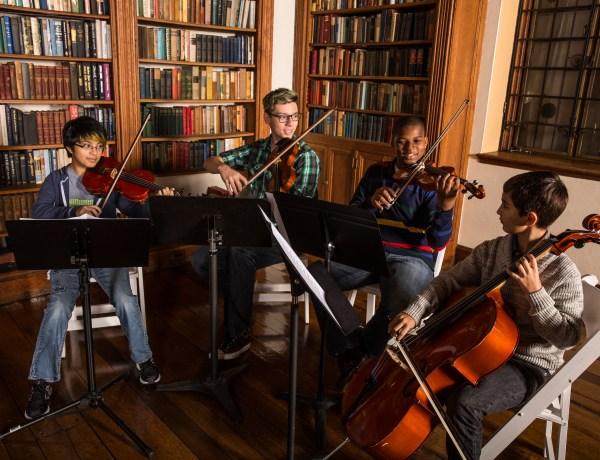 Choosing a String Instrument: The First Step in the Musical Journey
