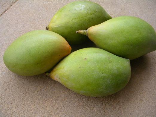 Tothapuri Raw Mango