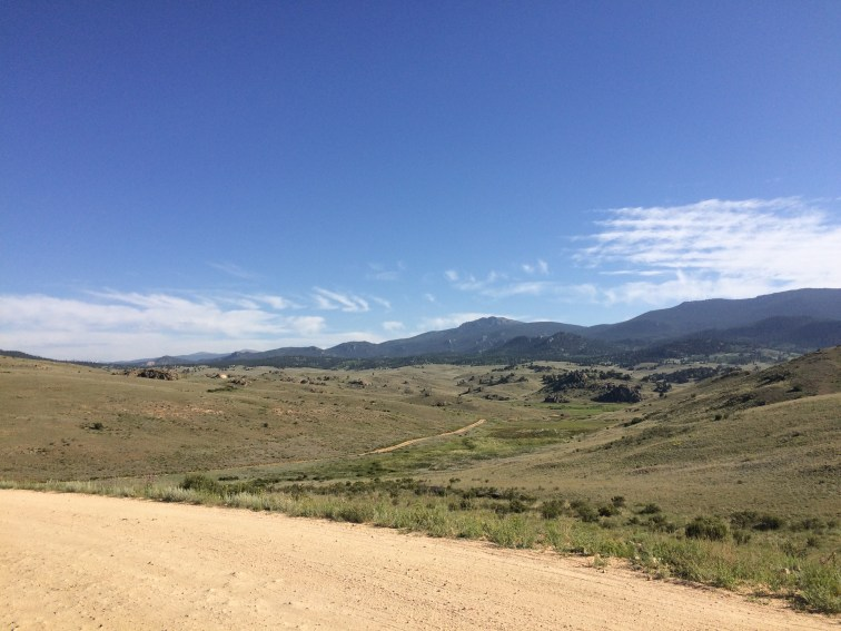 Tarryall Views