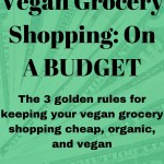 Vegan On A Budget The Vegan Fempire