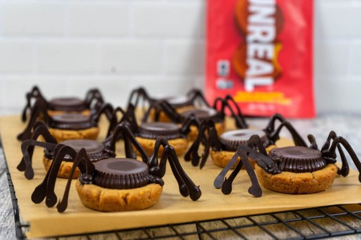 Spooky Spider Peanut Butter Cookies - The Vegan Rhino
